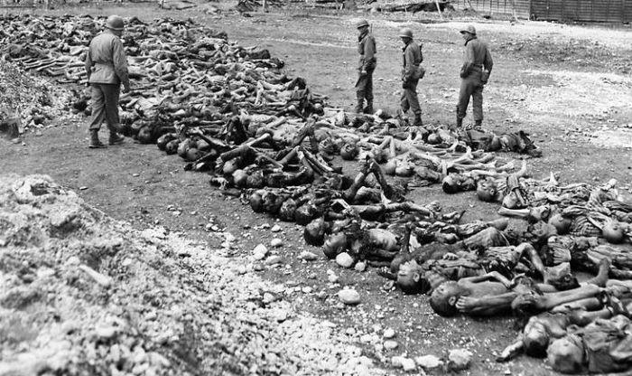 Жертвы концлагерей фото