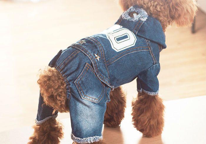 щенок джинсовый комбинезон фото