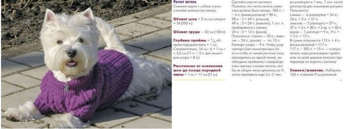 Свитер для собаки вязаный фото