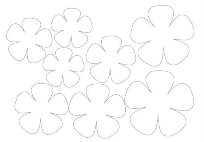 Цветы шаблон фото