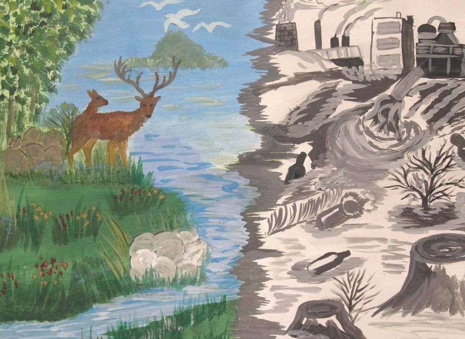Защита и охрана природы рисунок 11 фото