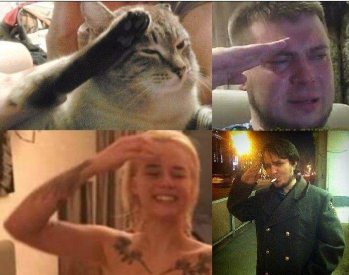 Таня Швед мем